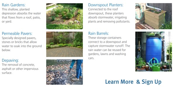 PWD Rain Check Examples